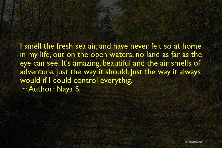Beautiful Life Quotes By Naya S.