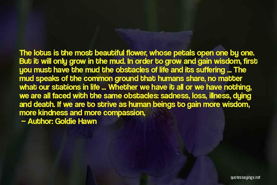 Top 8 Beautiful Lotus Flower Quotes & Sayings