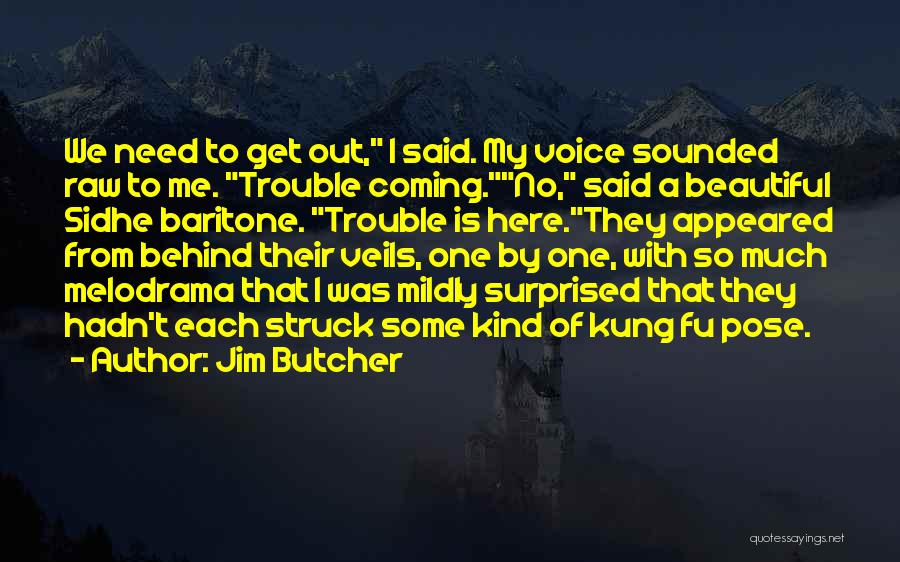 Beautiful Pose Quotes By Jim Butcher
