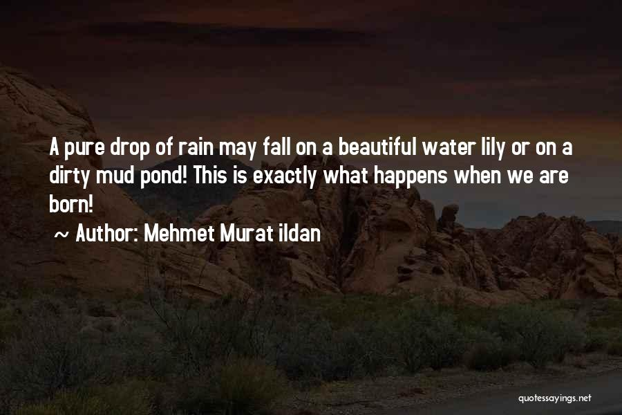 Beautiful Water Lily Quotes By Mehmet Murat Ildan