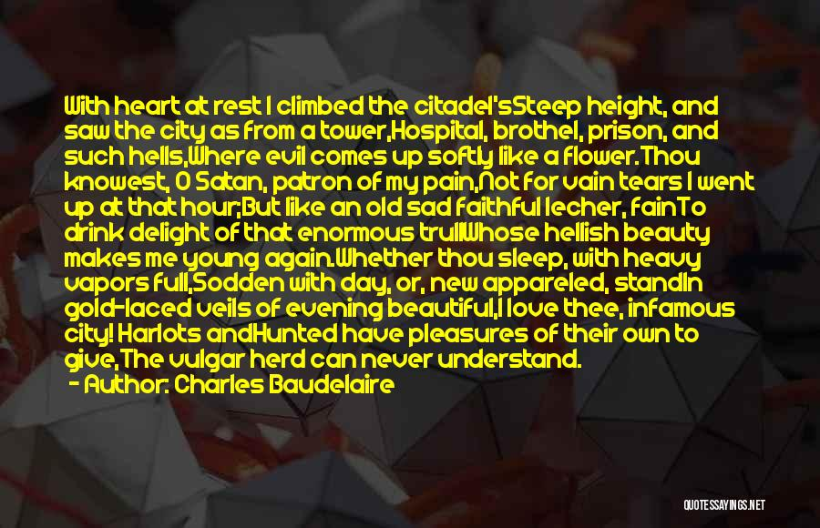 Beauty In The Heart Quotes By Charles Baudelaire