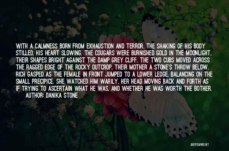 Beauty In The Heart Quotes By Danika Stone