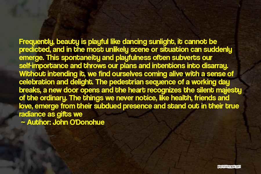 Beauty In The Heart Quotes By John O'Donohue