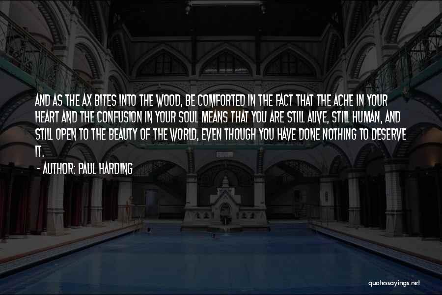Beauty In The Heart Quotes By Paul Harding