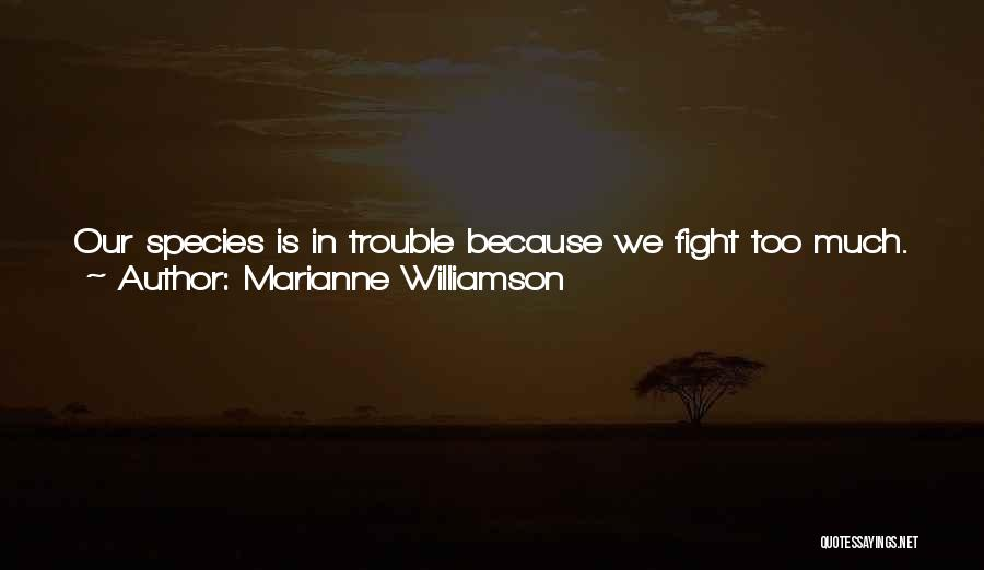 Because We Love Each Other Quotes By Marianne Williamson