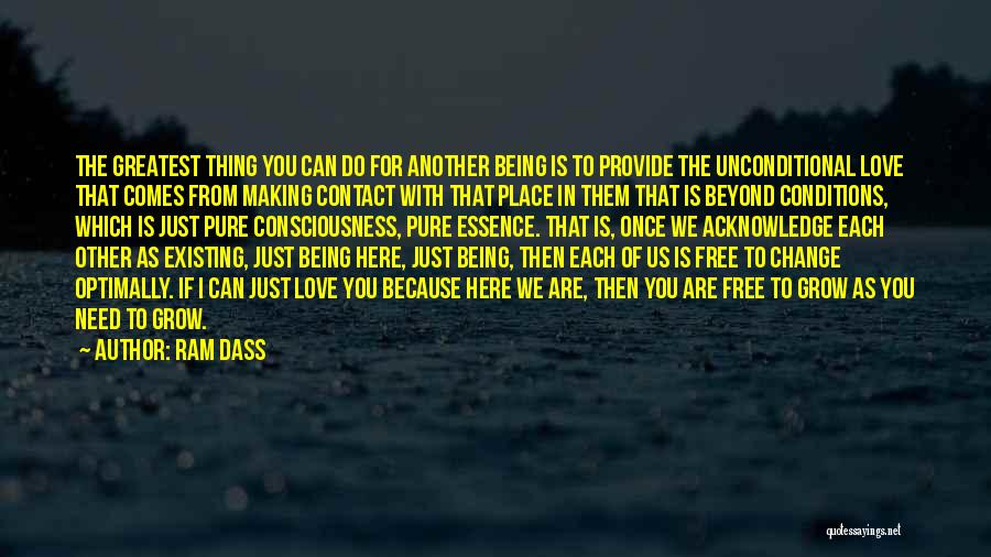 Because We Love Each Other Quotes By Ram Dass
