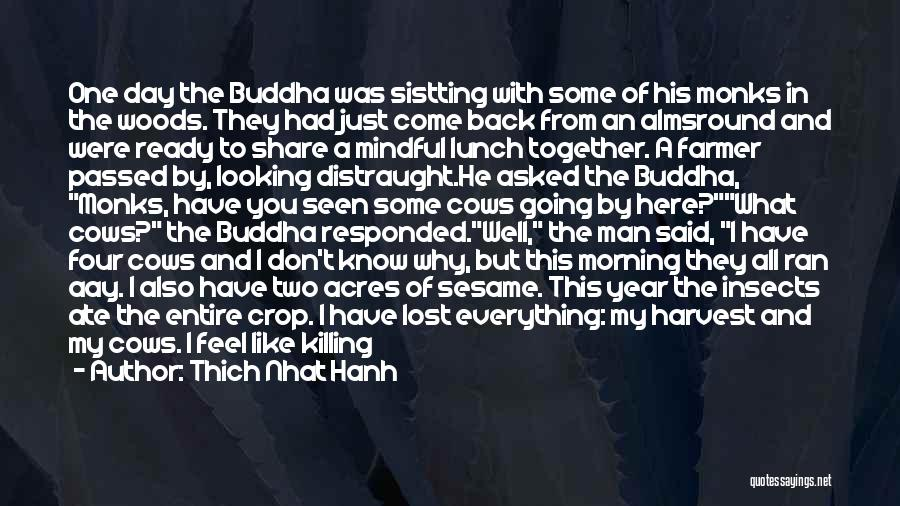 Been Together One Year Quotes By Thich Nhat Hanh