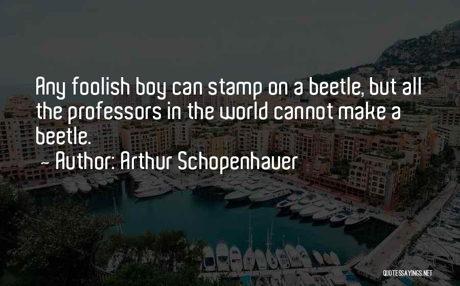 Beetle Bug Quotes By Arthur Schopenhauer