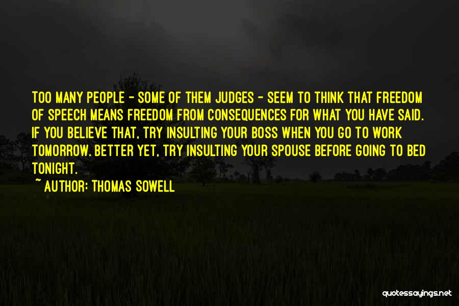 Before Going To Bed Quotes By Thomas Sowell