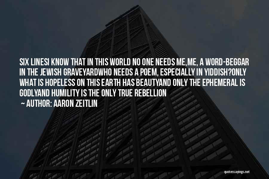 Beggar Quotes By Aaron Zeitlin