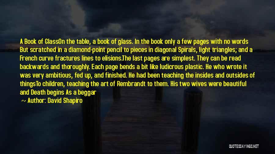 Beggar Quotes By David Shapiro