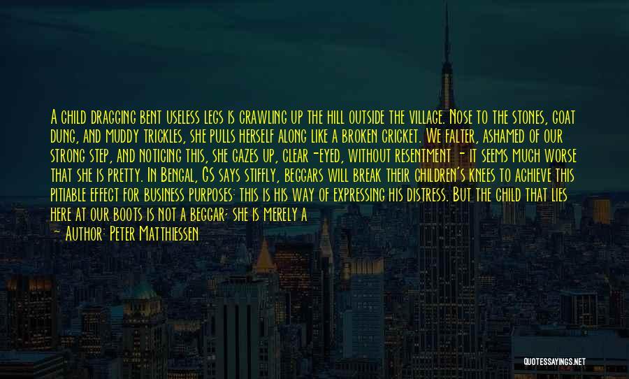 Beggar Quotes By Peter Matthiessen