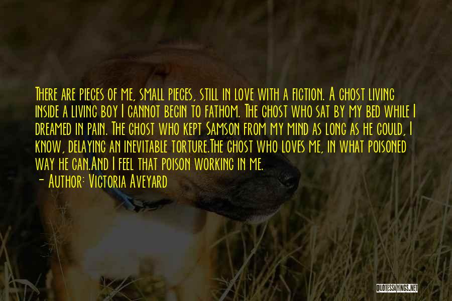Begin Love Quotes By Victoria Aveyard