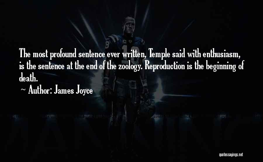 Beginning Of The End Quotes By James Joyce