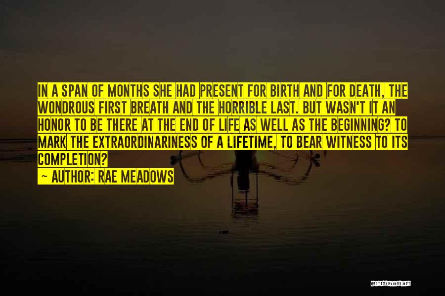 Beginning Of The End Quotes By Rae Meadows