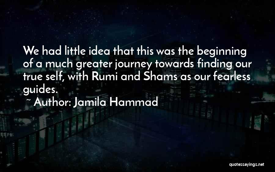 Beginning Of The Journey Quotes By Jamila Hammad