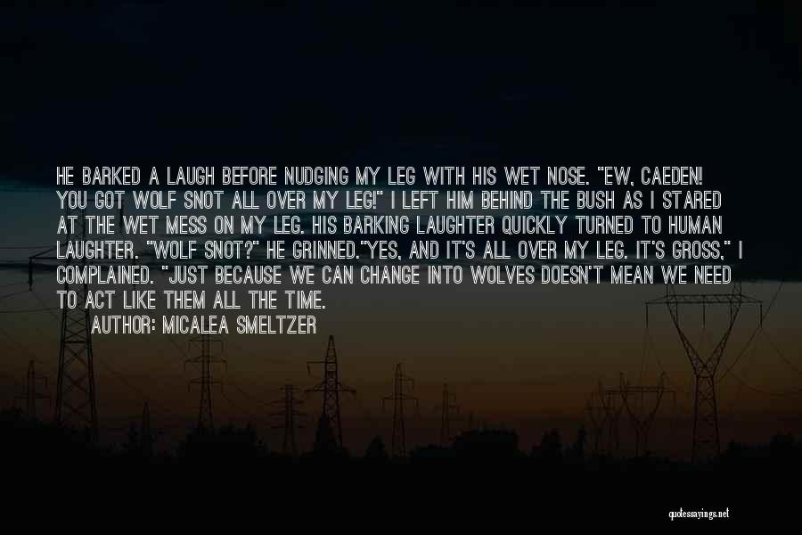 Behind My Laughter Quotes By Micalea Smeltzer