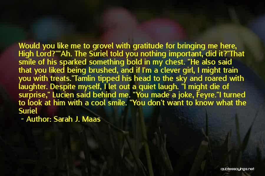 Behind My Laughter Quotes By Sarah J. Maas
