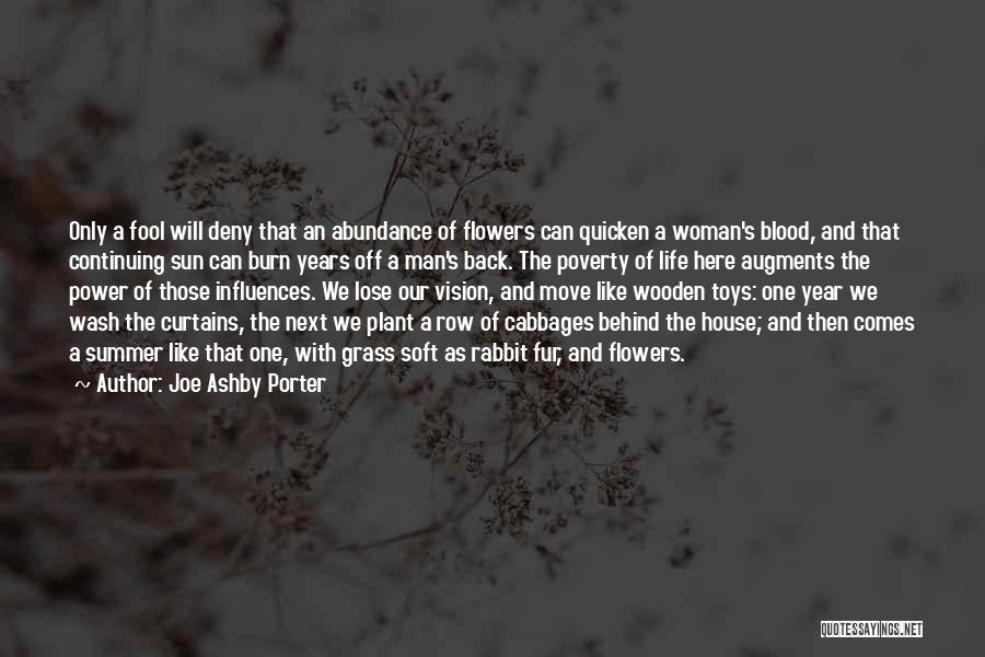 Behind The Curtains Quotes By Joe Ashby Porter