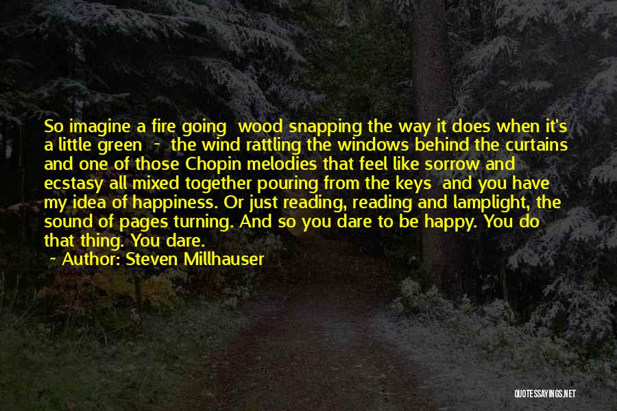 Behind The Curtains Quotes By Steven Millhauser