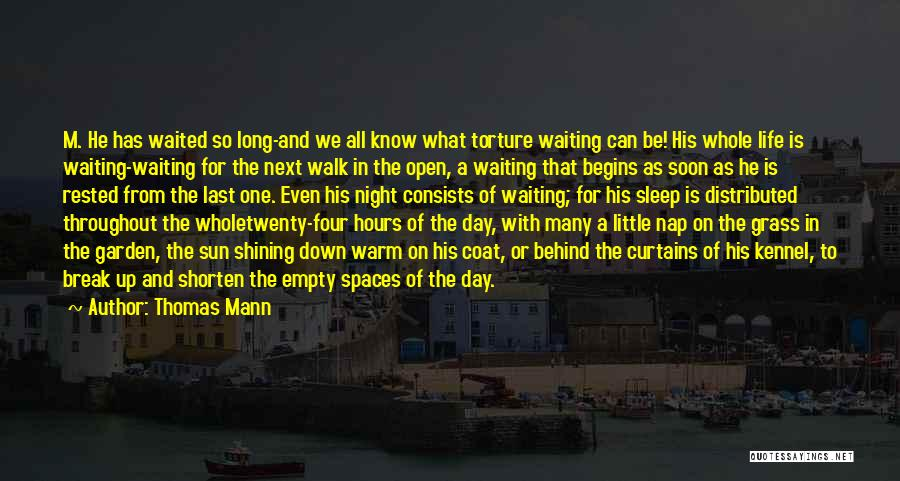 Behind The Curtains Quotes By Thomas Mann