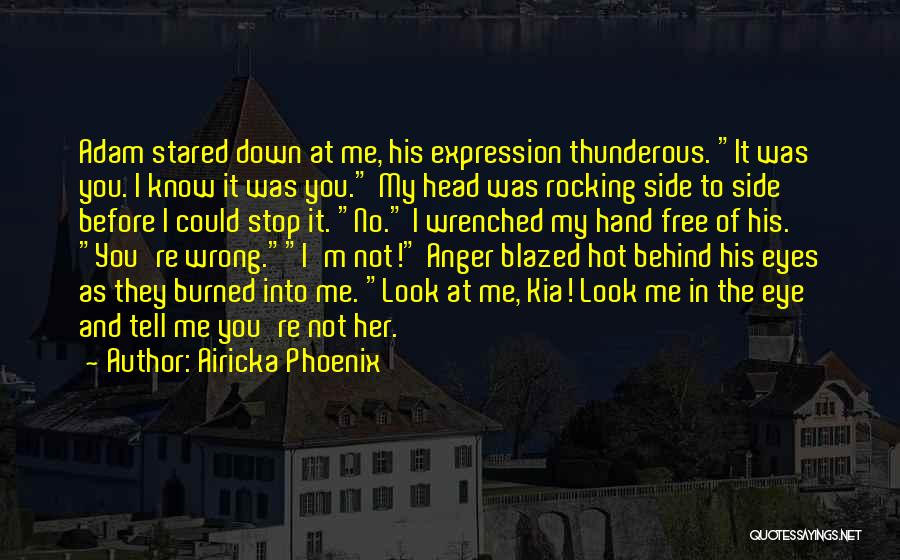 Behind The Eyes Quotes By Airicka Phoenix