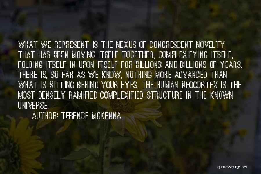 Behind The Eyes Quotes By Terence McKenna