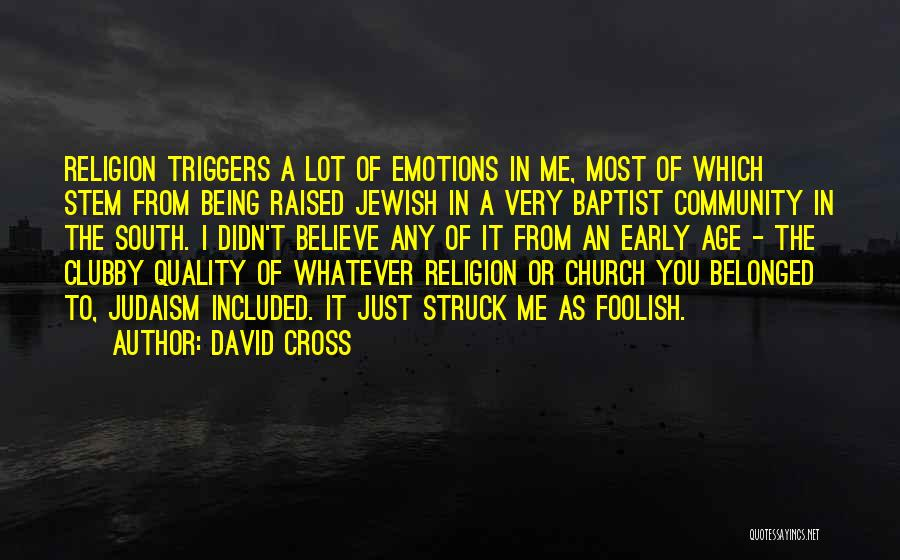 Being A Community Quotes By David Cross