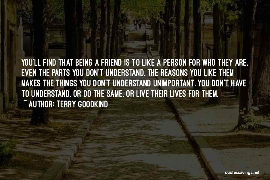 Being A Friend Quotes By Terry Goodkind