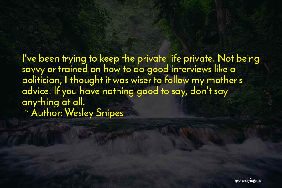Being A Good Mother Quotes By Wesley Snipes