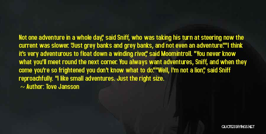 Being Adventurous Quotes By Tove Jansson