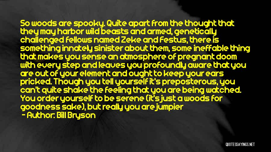 Being Drawn To Something Quotes By Bill Bryson