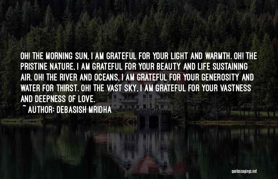Being Grateful For The Life You Have Quotes By Debasish Mridha