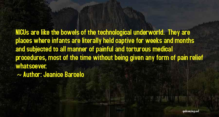 Being Held Quotes By Jeanice Barcelo