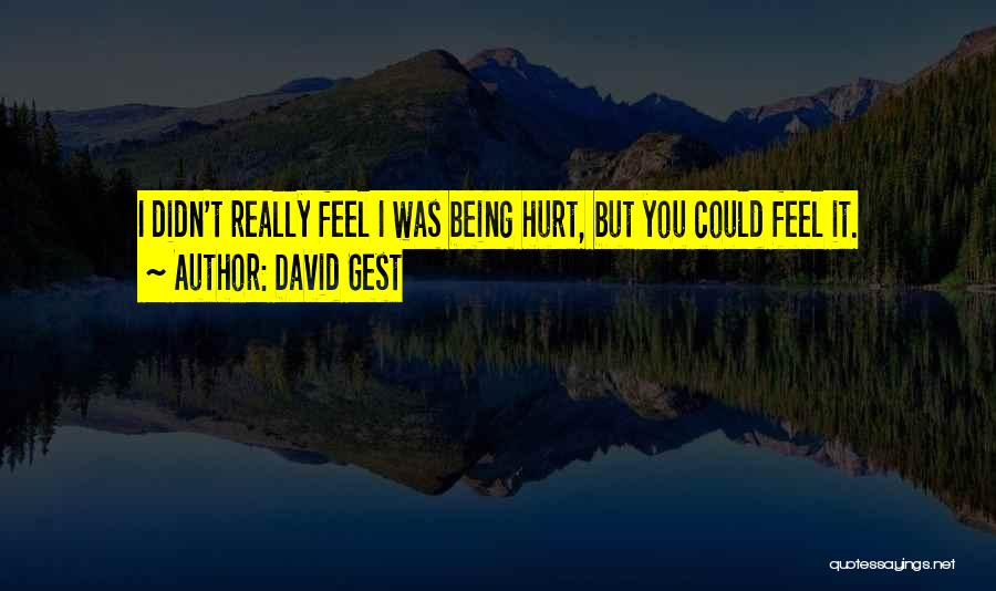Being Hurt By Others Quotes By David Gest