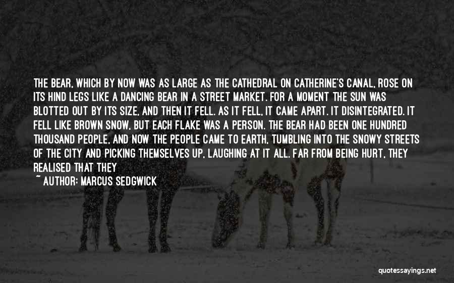 Being Hurt By Others Quotes By Marcus Sedgwick