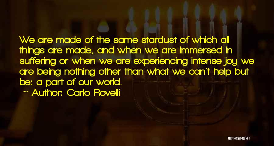 Being Immersed Quotes By Carlo Rovelli