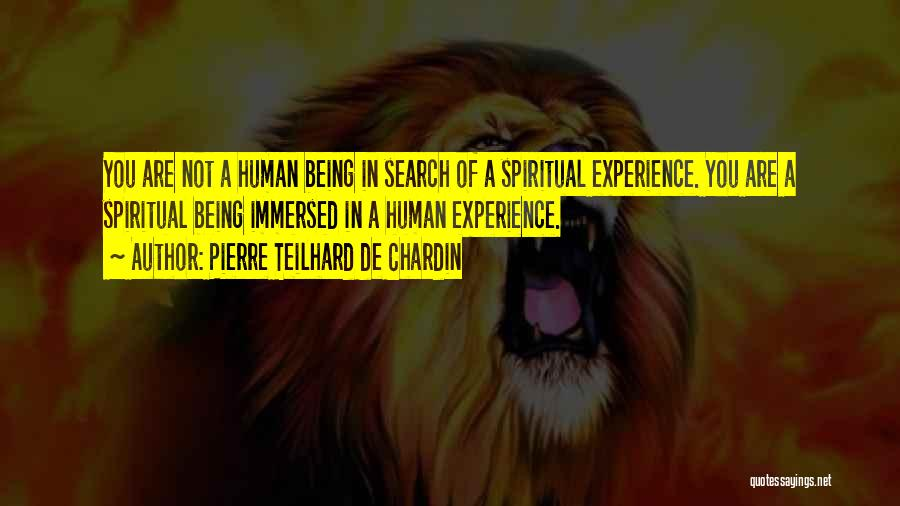 Being Immersed Quotes By Pierre Teilhard De Chardin