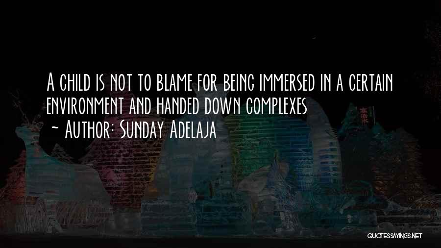 Being Immersed Quotes By Sunday Adelaja