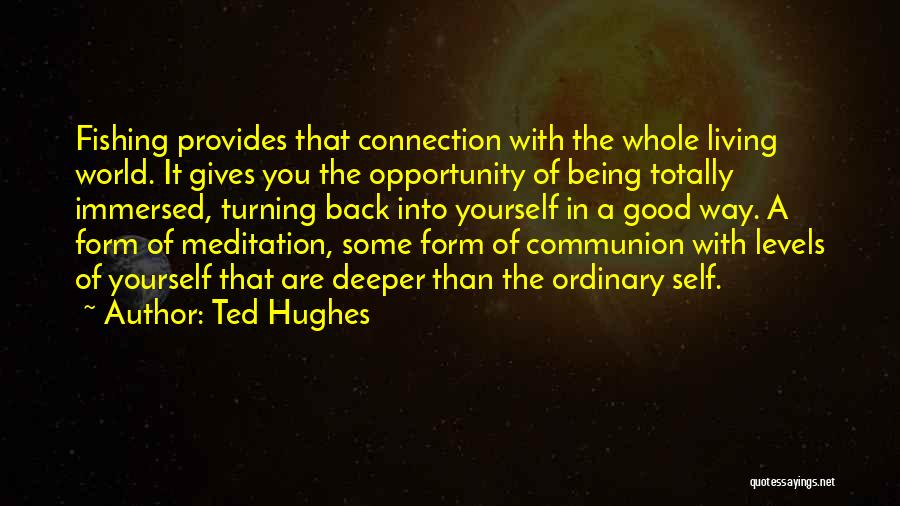 Being Immersed Quotes By Ted Hughes