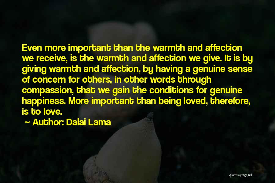 Being Important To Others Quotes By Dalai Lama