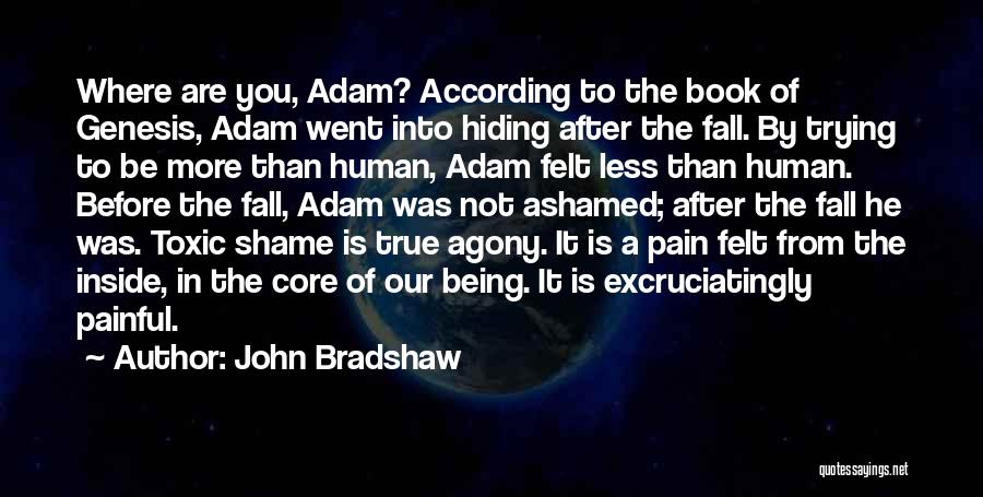Being Less Than Quotes By John Bradshaw