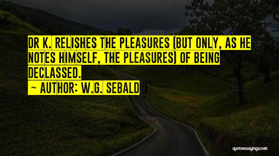 Being My Best Self Quotes By W.G. Sebald