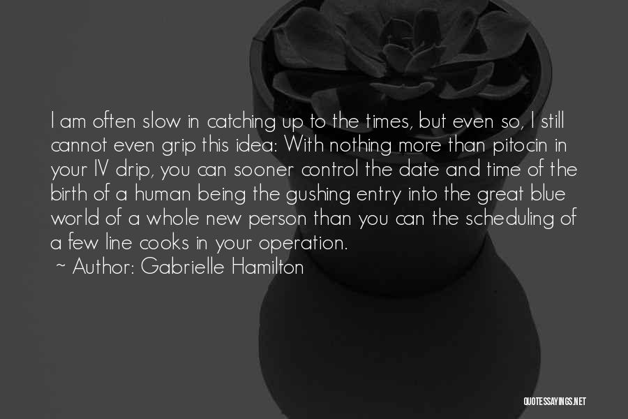 Being My Own Boss Quotes By Gabrielle Hamilton
