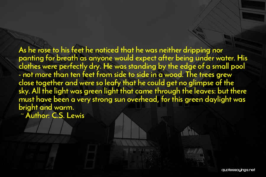 Being Noticed Quotes By C.S. Lewis