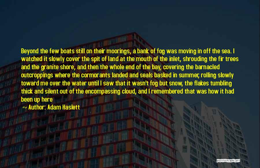 Being Out At Sea Quotes By Adam Haslett