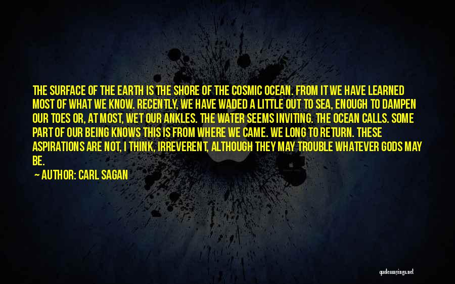 Being Out At Sea Quotes By Carl Sagan