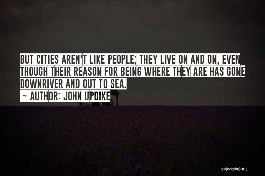 Being Out At Sea Quotes By John Updike
