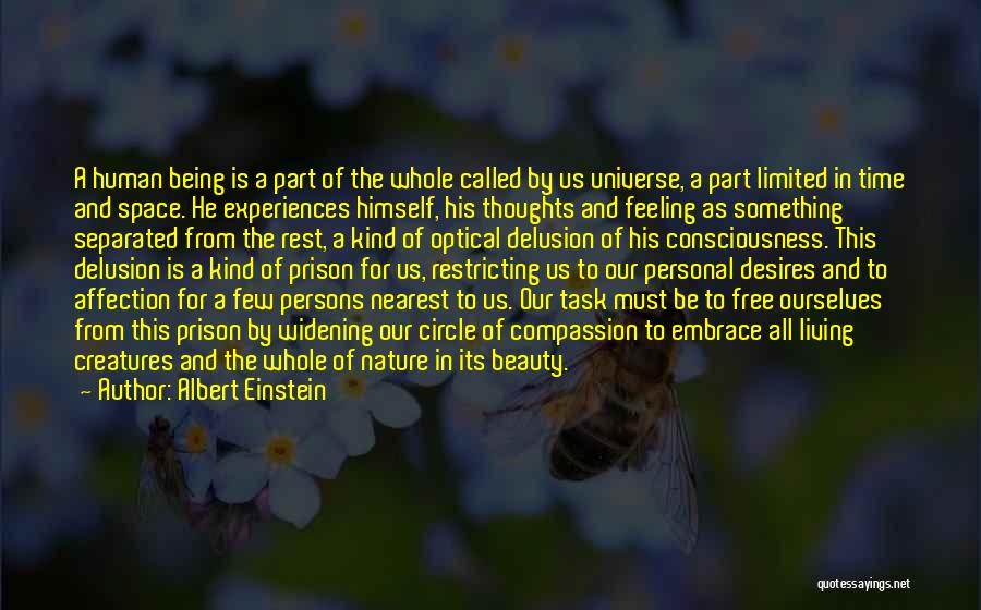 Being Part Of Something Quotes By Albert Einstein