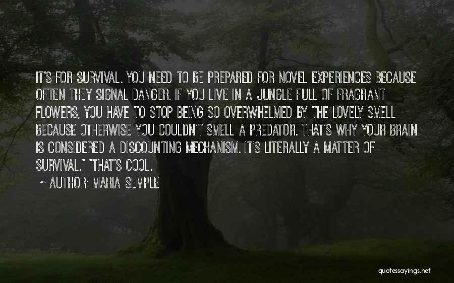 Being Prepared Quotes By Maria Semple